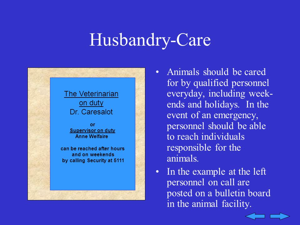 Husbandry-Care Animals should be cared for by qualified personnel everyday, including week- ends and holidays.