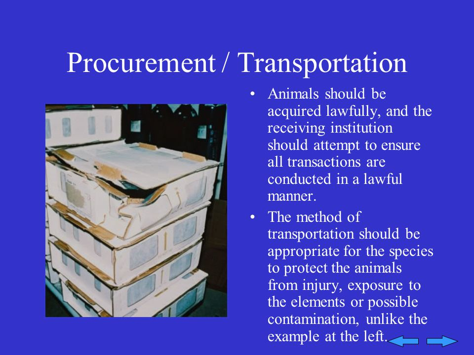 Procurement / Transportation Animals should be acquired lawfully, and the receiving institution should attempt to ensure all transactions are conducted in a lawful manner.