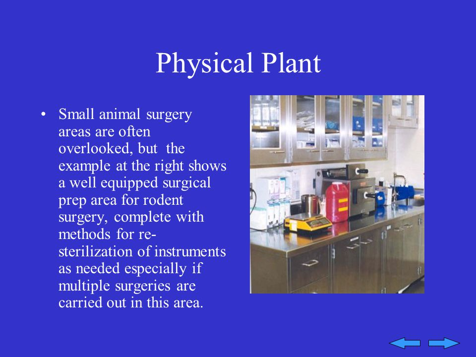 Physical Plant Small animal surgery areas are often overlooked, but the example at the right shows a well equipped surgical prep area for rodent surgery, complete with methods for re- sterilization of instruments as needed especially if multiple surgeries are carried out in this area.