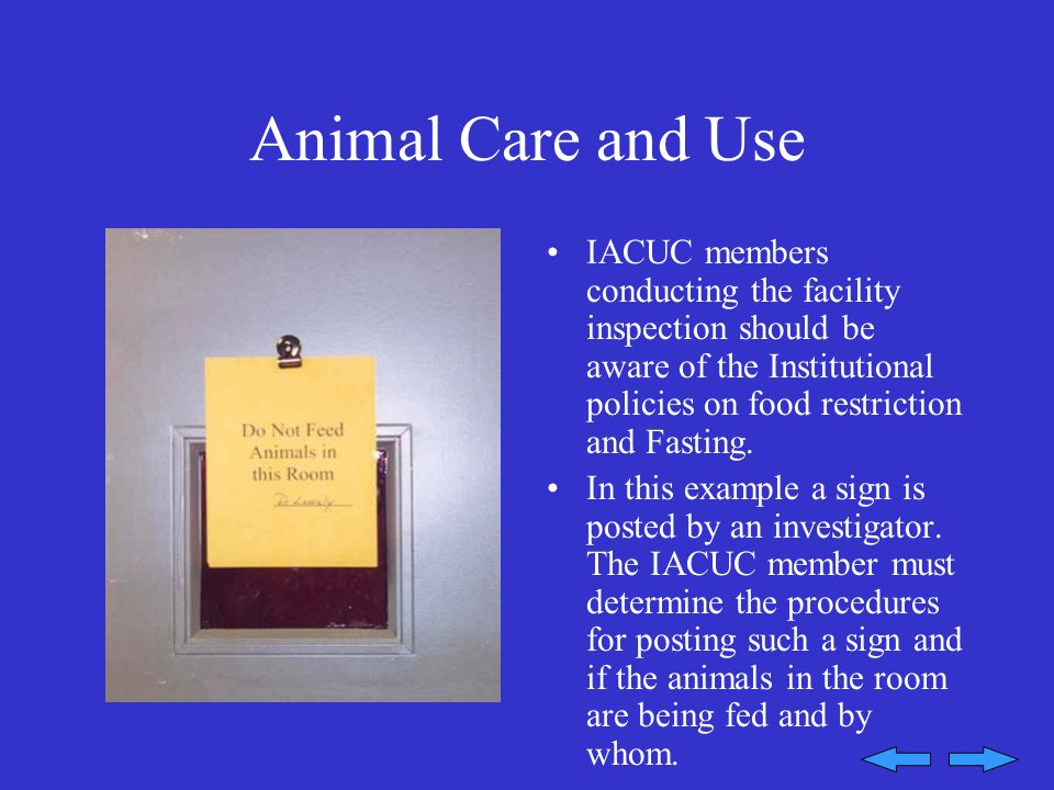 Animal Care and Use IACUC members conducting the facility inspection should be aware of the Institutional policies on food restriction and Fasting.