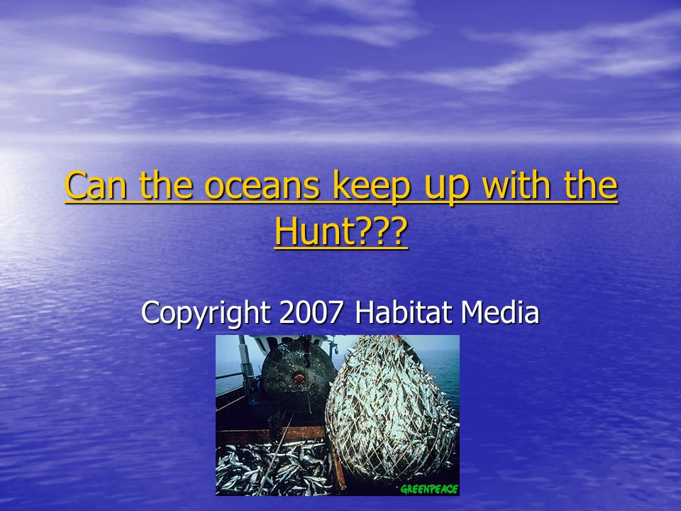 Can the oceans keep up with the Hunt . Can the oceans keep up with the Hunt .