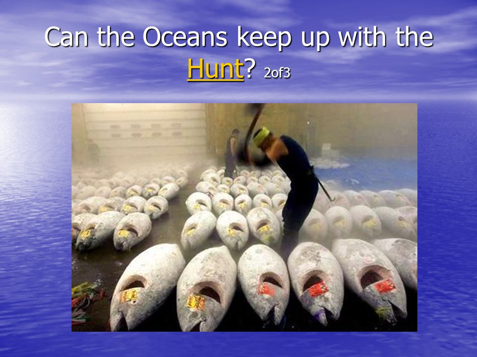 Can the Oceans keep up with the Hunt 2of3 Hunt