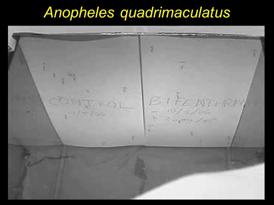 Differences in Landing Patterns Cx.quinquefasciatus Control Bifenthrin Ae.