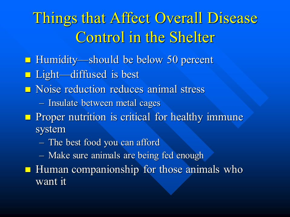 Things that Affect Overall Disease Control in the Shelter Humidity—should be below 50 percent Humidity—should be below 50 percent Light—diffused is be