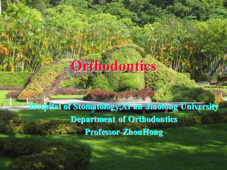 Orthodontics Hospital of Stomatology,Xi'an Jiaotong University Department of Orthodontics Professor ZhouHong