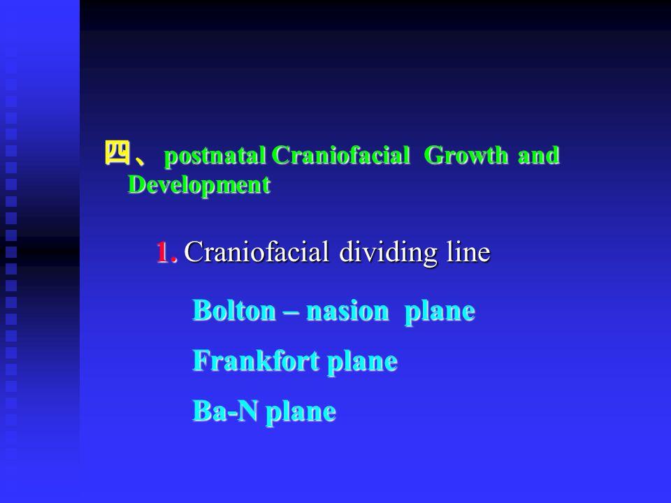 四、 postnatal Craniofacial Growth and Development 1. Craniofacial dividing line 1. Craniofacial dividing line Bolton – nasion plane Bolton – nasion pla