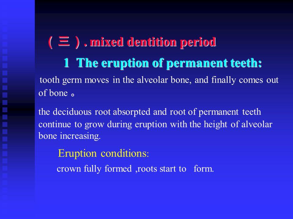(三). mixed dentition period (三). mixed dentition period 1 The eruption of permanent teeth: 1 The eruption of permanent teeth: tooth germ moves in the