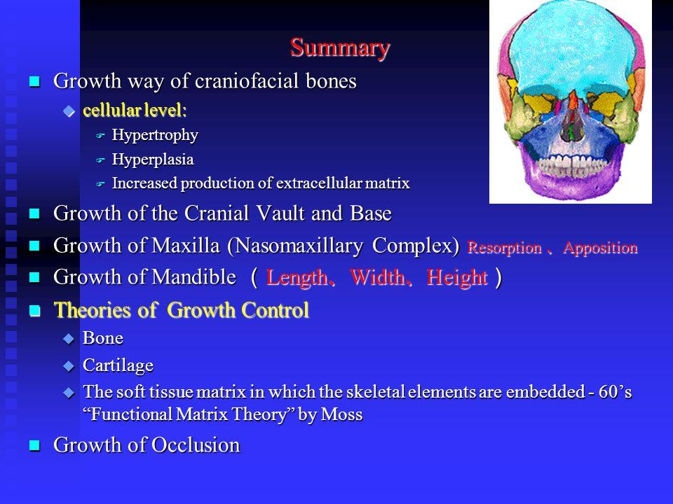 Summary n Growth way of craniofacial bones u cellular level: F Hypertrophy F Hyperplasia F Increased production of extracellular matrix n Growth of th