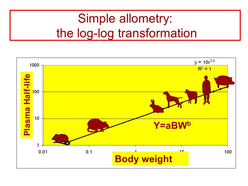 Simple allometry: the log-log transformation Y=aBW b Plasma Half-life Body weight