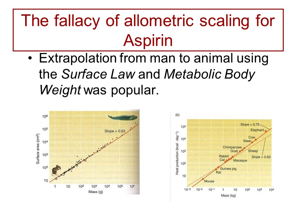 The fallacy of allometric scaling for Aspirin Extrapolation from man to animal using the Surface Law and Metabolic Body Weight was popular.