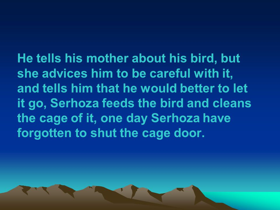 He tells his mother about his bird, but she advices him to be careful with it, and tells him that he would better to let it go, Serhoza feeds the bird and cleans the cage of it, one day Serhoza have forgotten to shut the cage door.
