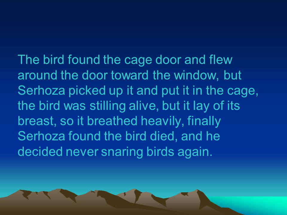 The bird found the cage door and flew around the door toward the window, but Serhoza picked up it and put it in the cage, the bird was stilling alive, but it lay of its breast, so it breathed heavily, finally Serhoza found the bird died, and he decided never snaring birds again.