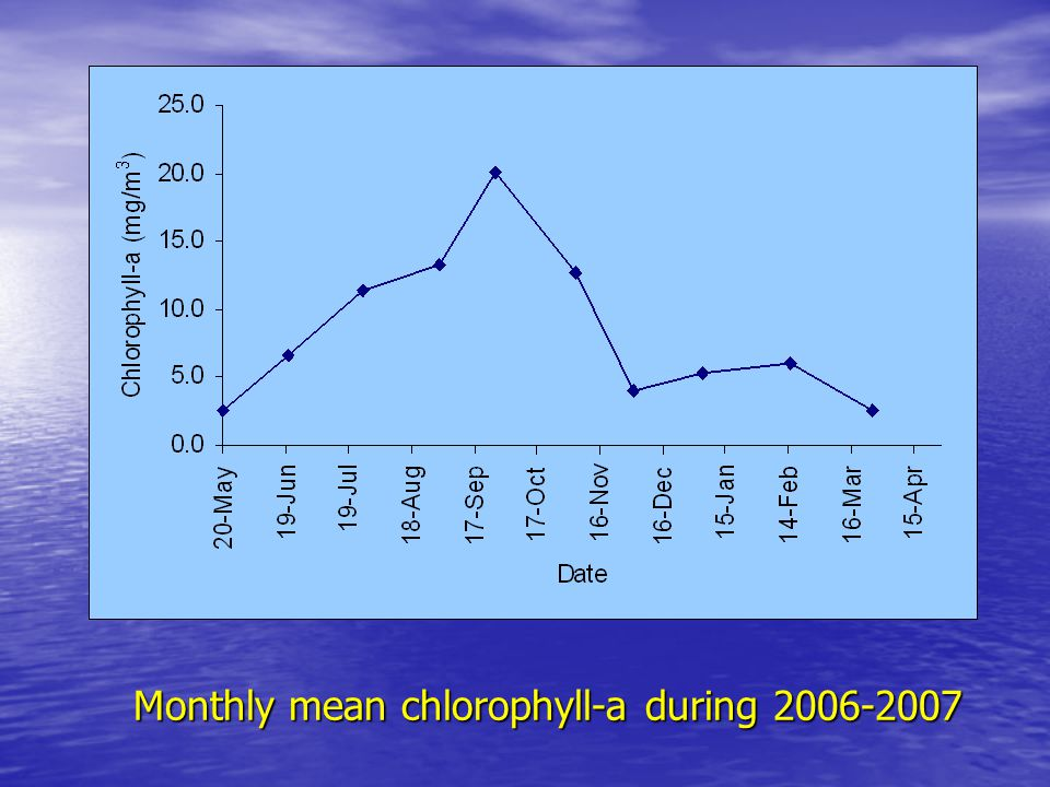 Monthly mean chlorophyll-a during 2006-2007