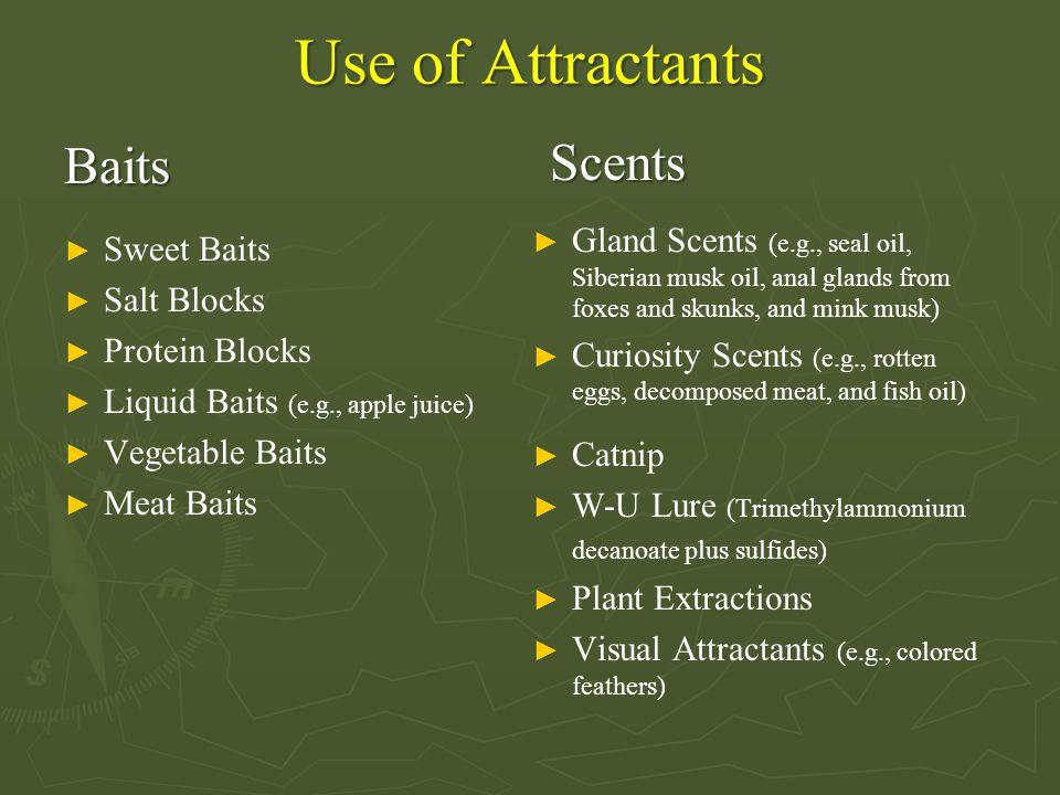 Use of Attractants Baits ► Sweet Baits ► Salt Blocks ► Protein Blocks ► Liquid Baits (e.g., apple juice) ► Vegetable Baits ► Meat Baits Scents ► Gland