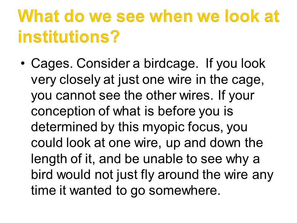 Furthermore, even if, one day at a time, you myopically inspected each wire, you still could not see why a bird would have trouble going past the wires to get anywhere.