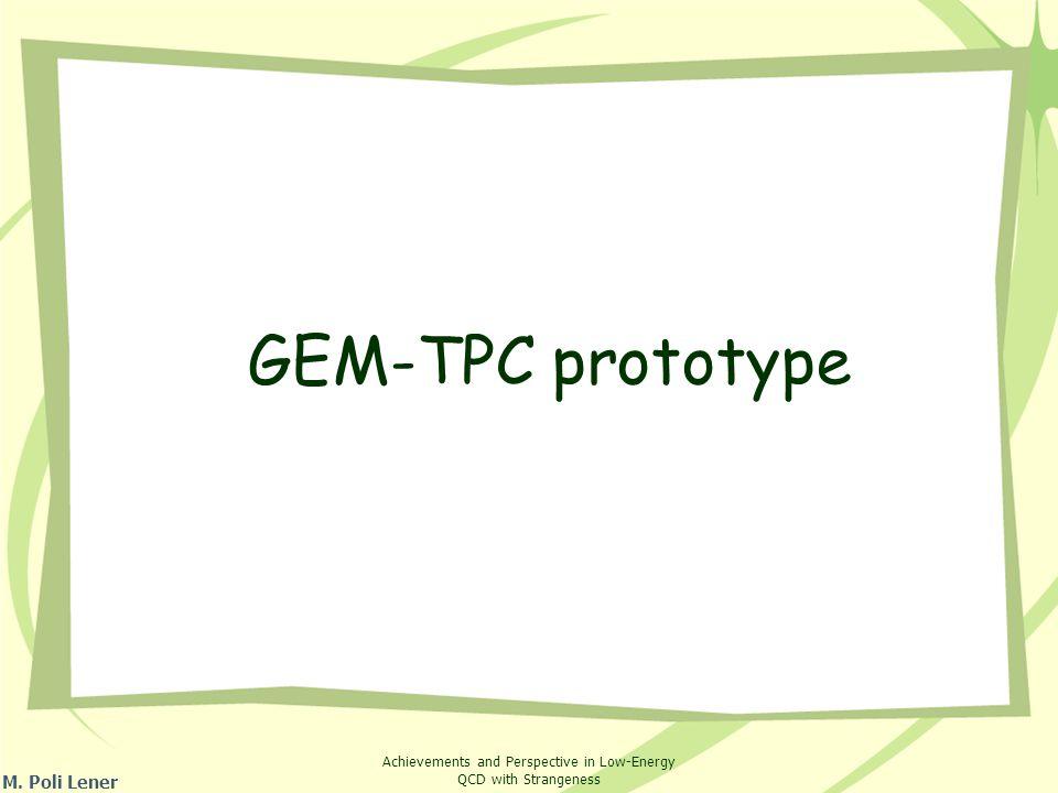 GEM-TPC prototype M. Poli Lener