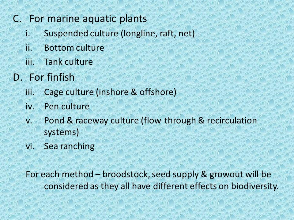 C.For marine aquatic plants i.Suspended culture (longline, raft, net) ii.Bottom culture iii.Tank culture D.For finfish iii.Cage culture (inshore & offshore) iv.Pen culture v.Pond & raceway culture (flow-through & recirculation systems) vi.Sea ranching For each method – broodstock, seed supply & growout will be considered as they all have different effects on biodiversity.