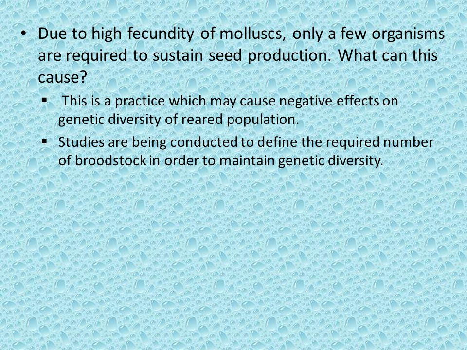 Due to high fecundity of molluscs, only a few organisms are required to sustain seed production.