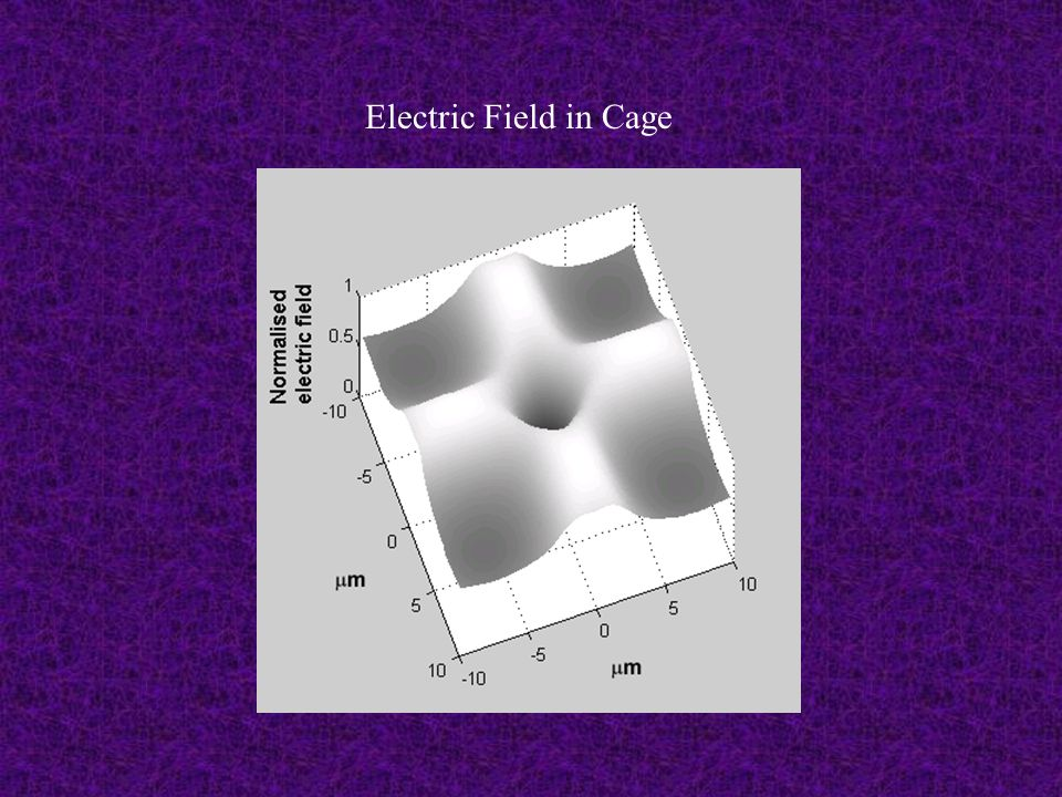 Electric Field in Cage