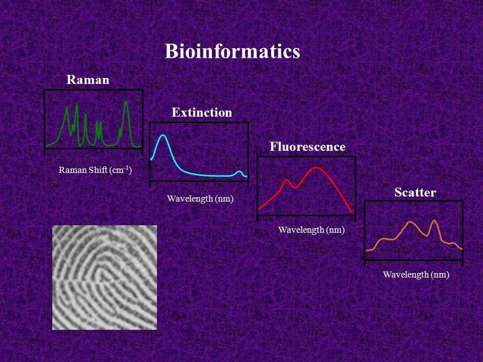 Bioinformatics Raman Extinction Fluorescence Scatter Raman Shift (cm -1 ) Wavelength (nm)