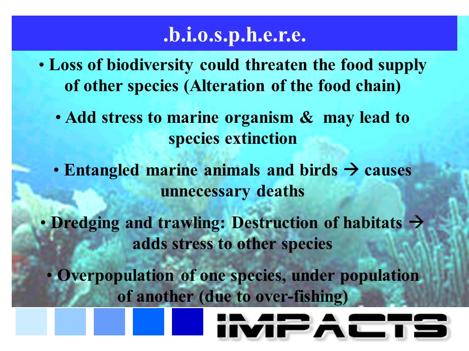 .b.i.o.s.p.h.e.r.e. Loss of biodiversity could threaten the food supply of other species (Alteration of the food chain) Add stress to marine organism