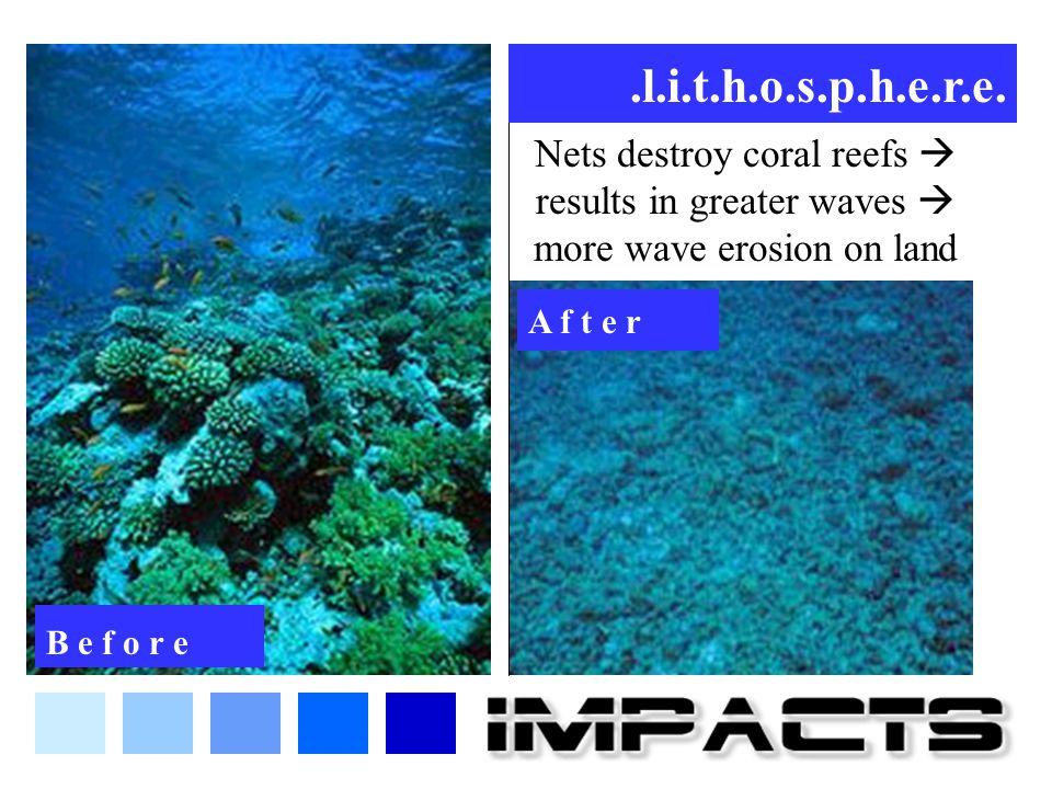 Nets destroy coral reefs  results in greater waves  more wave erosion on land.l.i.t.h.o.s.p.h.e.r.e. B e f o r e A f t e r
