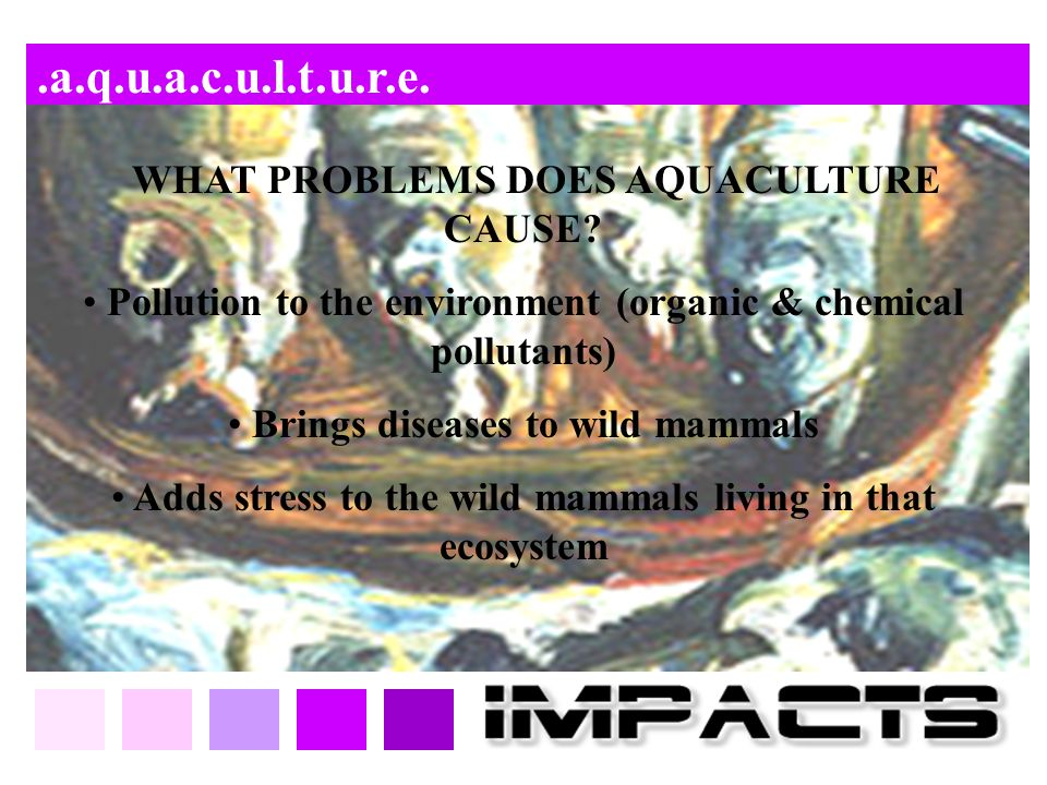 .a.q.u.a.c.u.l.t.u.r.e. WHAT PROBLEMS DOES AQUACULTURE CAUSE? Pollution to the environment (organic & chemical pollutants) Brings diseases to wild mam