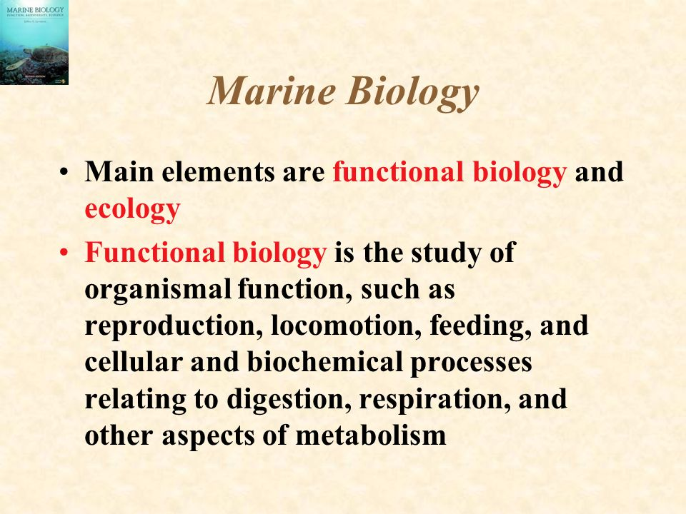 Marine Biology Main elements are functional biology and ecology Functional biology is the study of organismal function, such as reproduction, locomoti