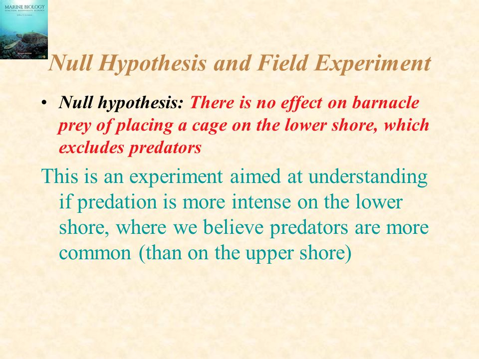 Null Hypothesis and Field Experiment Null hypothesis: There is no effect on barnacle prey of placing a cage on the lower shore, which excludes predato