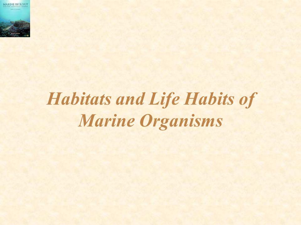 Habitats and Life Habits of Marine Organisms
