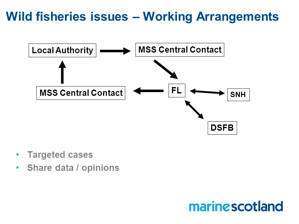 Wild fisheries issues – Working Arrangements Local Authority MSS Central Contact FL DSFB SNH Targeted cases Share data / opinions