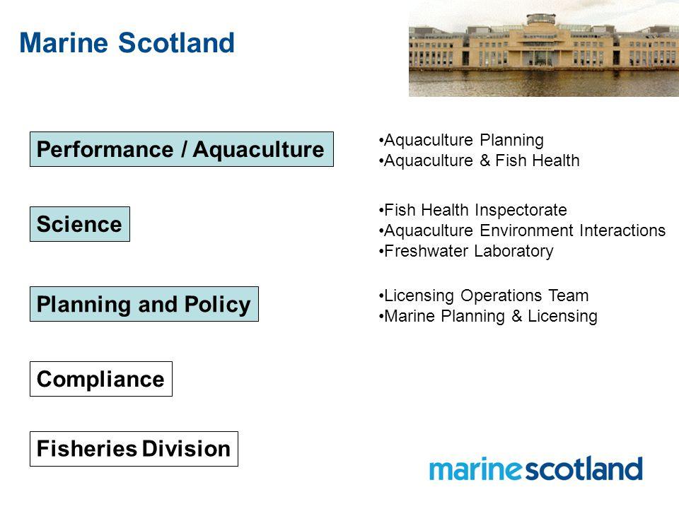 Marine Scotland Science Marine Assessments Programme Aquaculture & Fish Health Programme Freshwater Programme Marine Ecosystems Programme Marine Analytical Unit Science Director