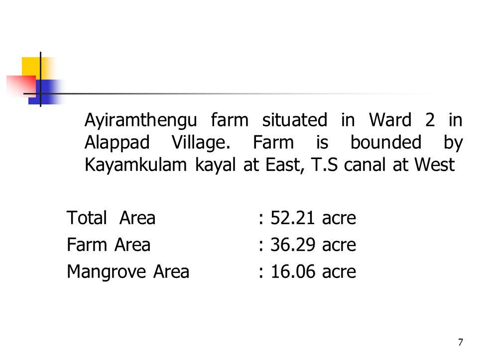 Ayiramthengu farm situated in Ward 2 in Alappad Village.