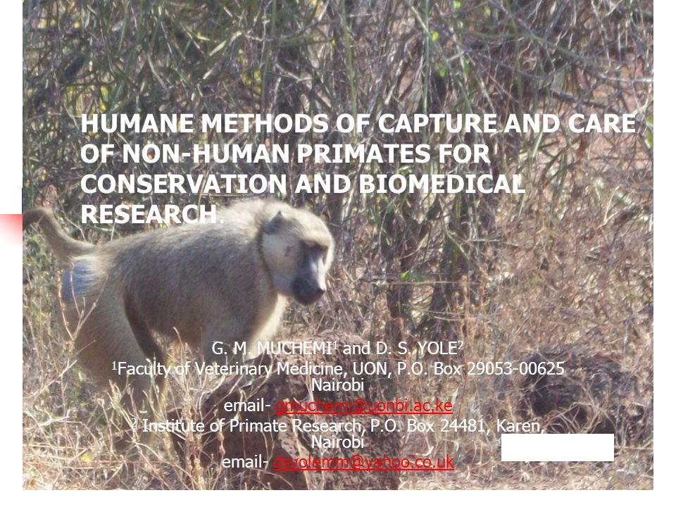 Introduction Human-wildlife conflict in Kenya is manifested in various ways.