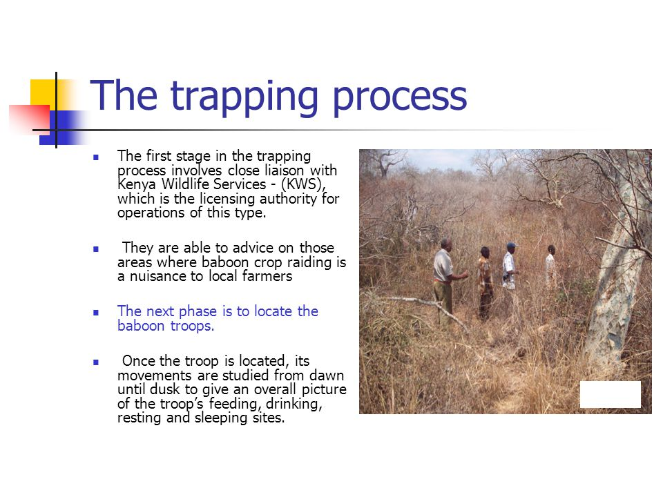 Trapping process cont..