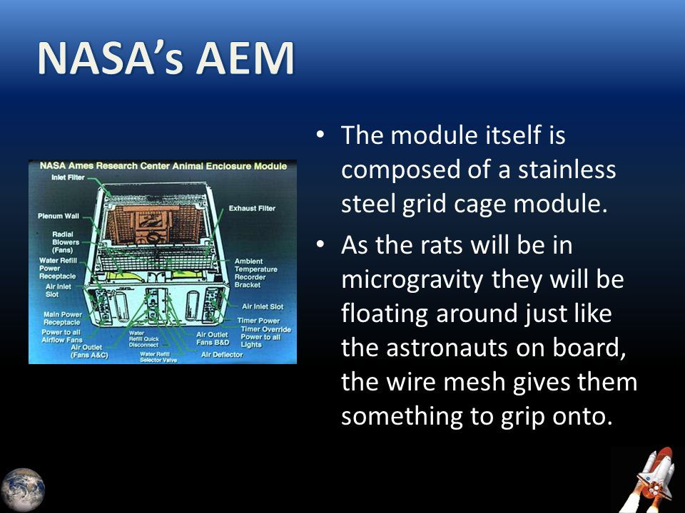 The module itself is composed of a stainless steel grid cage module. As the rats will be in microgravity they will be floating around just like the as