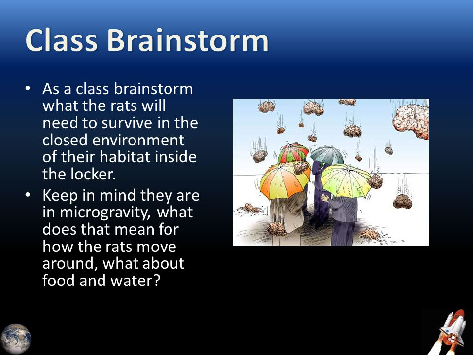 As a class brainstorm what the rats will need to survive in the closed environment of their habitat inside the locker. Keep in mind they are in microg
