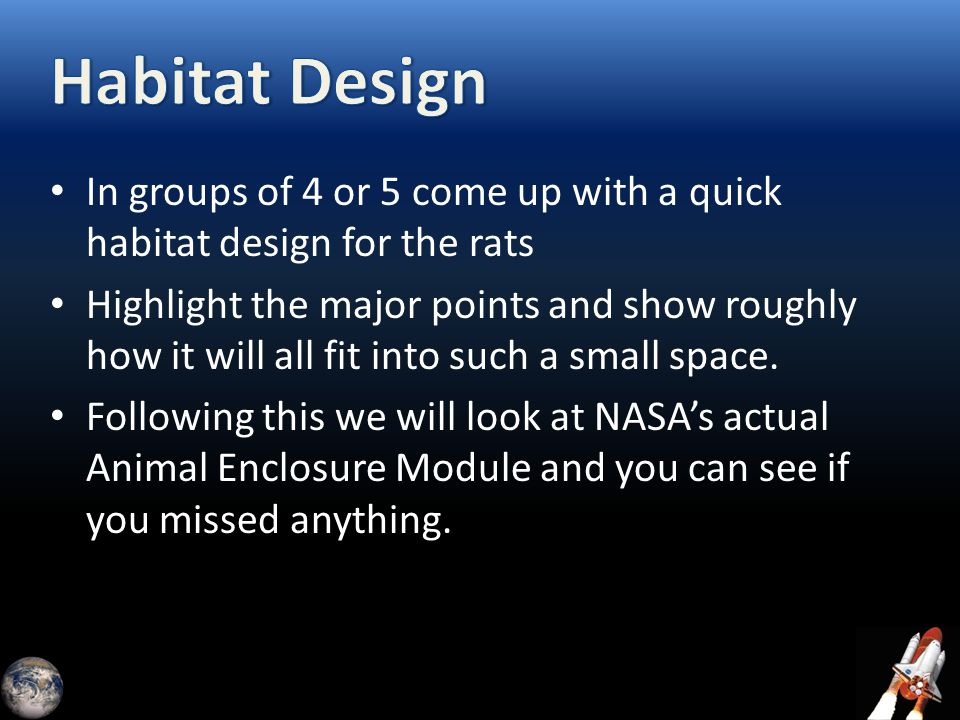 In groups of 4 or 5 come up with a quick habitat design for the rats Highlight the major points and show roughly how it will all fit into such a small