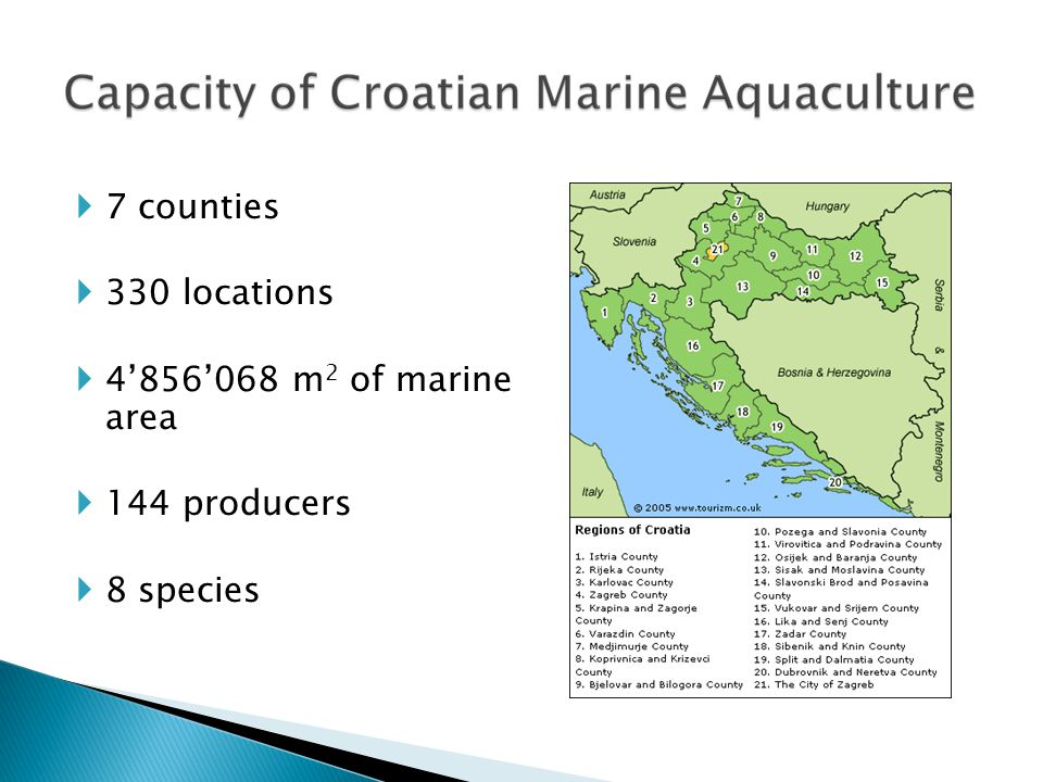 Ministry of Agriculture - domain ministry Regulation: Marine Fisheries Act  4 by-lows (licenses, criteria, data collection, exam) Directorate of Fisheries  Issues License for fish farming  Data collection – basis for the realization of all rights  Financial support Veterinary Directorate  Food safety ManagementInstitutions