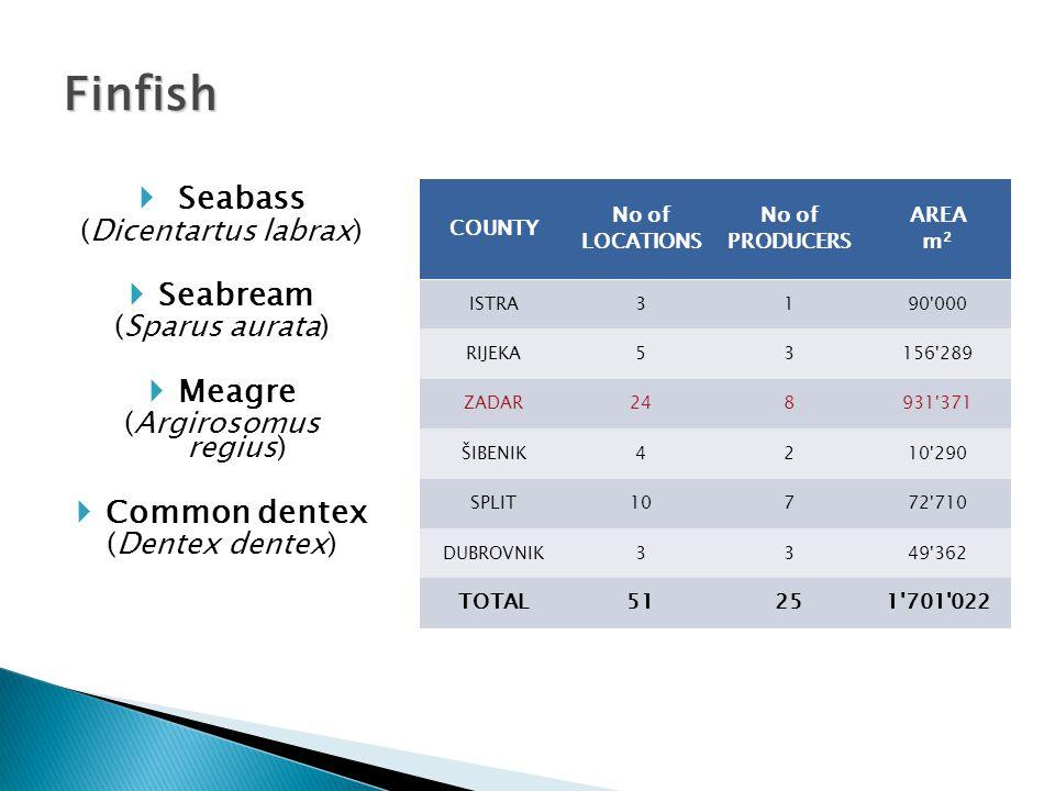  European flat oyster (Ostrea edulis)  Mediterranean mussel (Mytilus galoprovintialis) COUNTY No OF LOCATIONS No OF PRODUCERS AREA m 2 Istra3517382'479 Zadar1312121'615 Šibenik4720210'584 Split112'000 Dubrovnik159681'067'552 TOTAL2251181'784'230 Shellfish