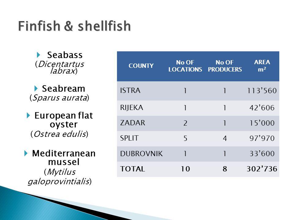 COUNTY No OF LOCATIONS No OF PRODUCERS AREA m 2 Zadar133987'500 Split1180'580 TOTAL1441'068'080 Bluefin tuna Bluefin tuna Thunnus thynnus