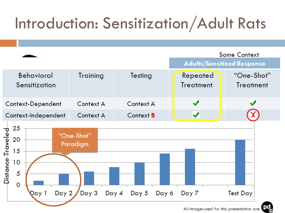Introduction: Sensitization/Adult Rats All images used for this presentation are + Novel Context Same Context Challenge One-Shot Paradigm One-Shot Paradigm Adults/Sensitized Response Behavioral Sensitization TrainingTesting Repeated Treatment One-Shot Treatment Context-DependentContext A Context-IndependentContext AContext B Distance Traveled
