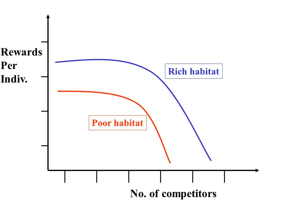 ________ | | | Rich habitat Poor habitat Rewards Per Indiv. No. of competitors