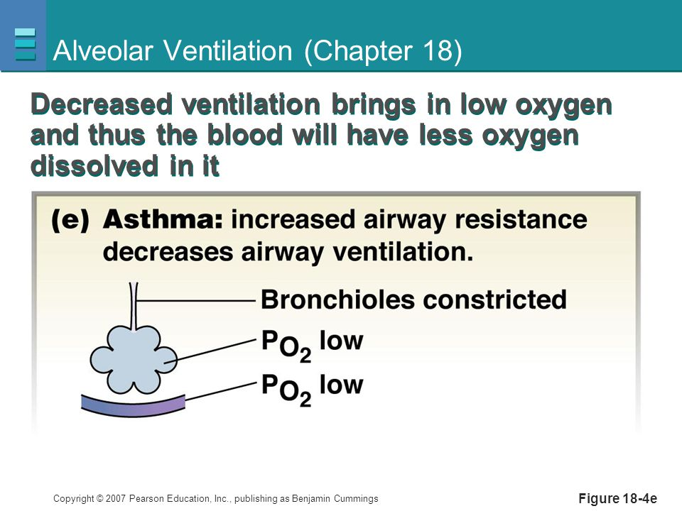 Copyright © 2007 Pearson Education, Inc., publishing as Benjamin Cummings Figure 18-4e Alveolar Ventilation (Chapter 18) Decreased ventilation brings in low oxygen and thus the blood will have less oxygen dissolved in it