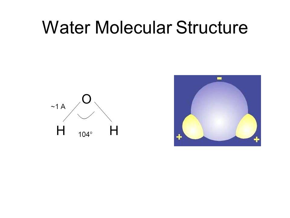 Water Molecular Structure H O H 104° ~1 A