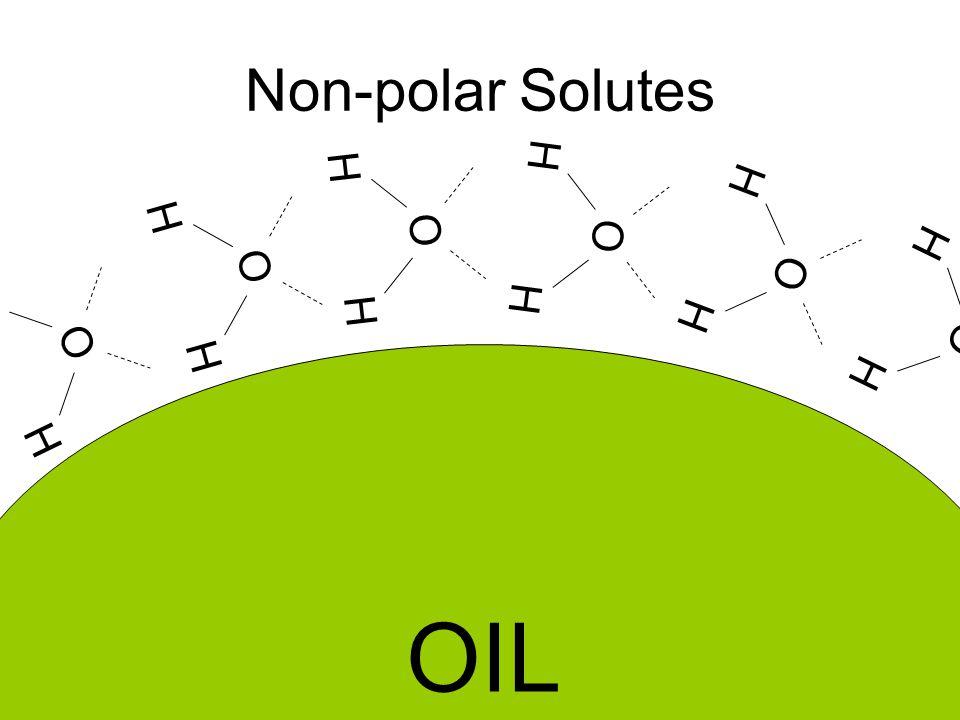 Non-polar Solutes OIL H O H H O H H O H H O H H O H H O H