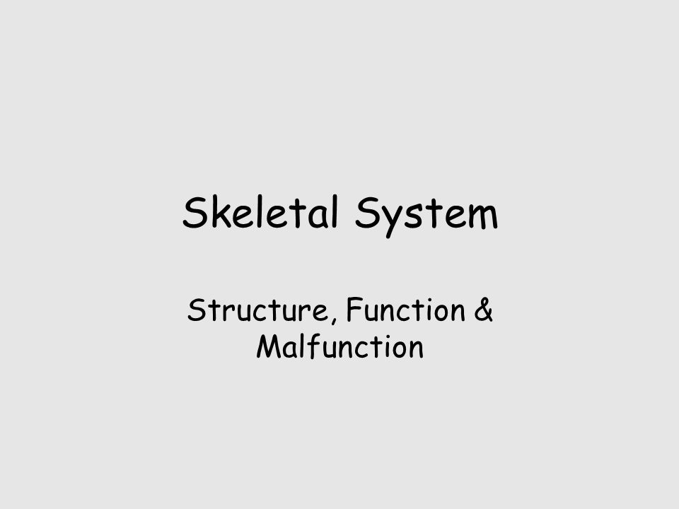 Skeletal System Structure, Function & Malfunction