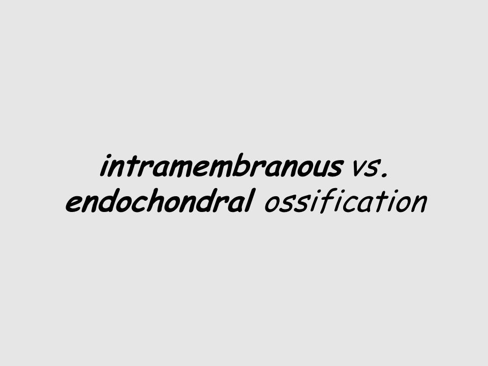intramembranous vs. endochondral ossification