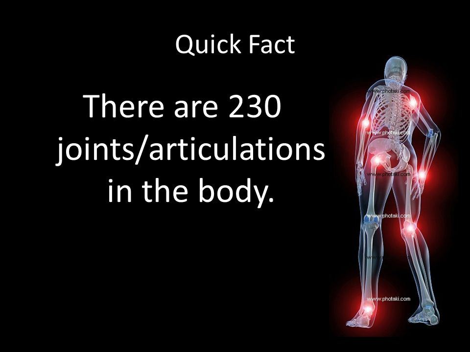 Quick Fact There are 230 joints/articulations in the body.