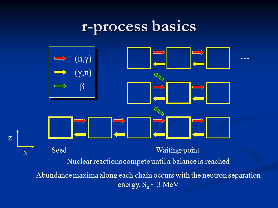 r-process basics Nuclear reactions compete until a balance is reached Abundance maxima along each chain occurs with the neutron separation energy, S n ~ 3 MeV N Z (n,γ) (γ,n) β-β- SeedWaiting-point …